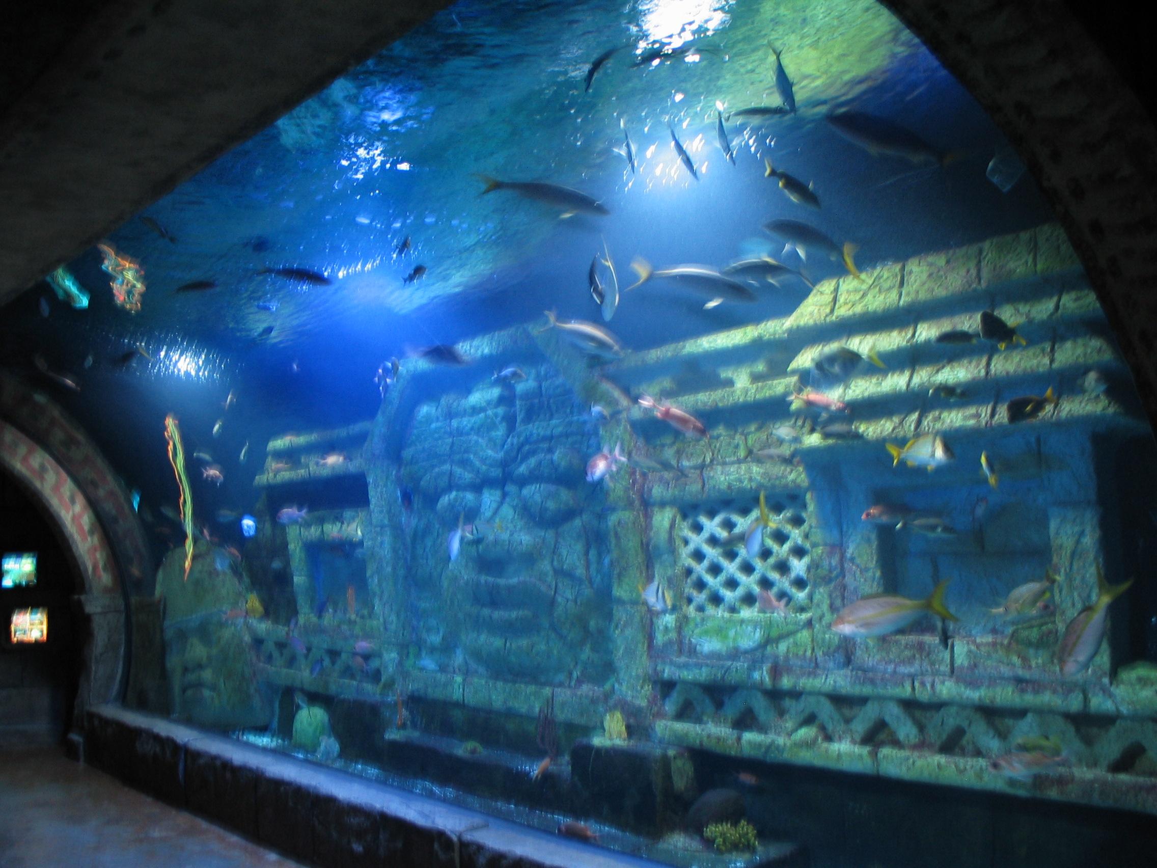 Aquarium Restaurant Houston Texas