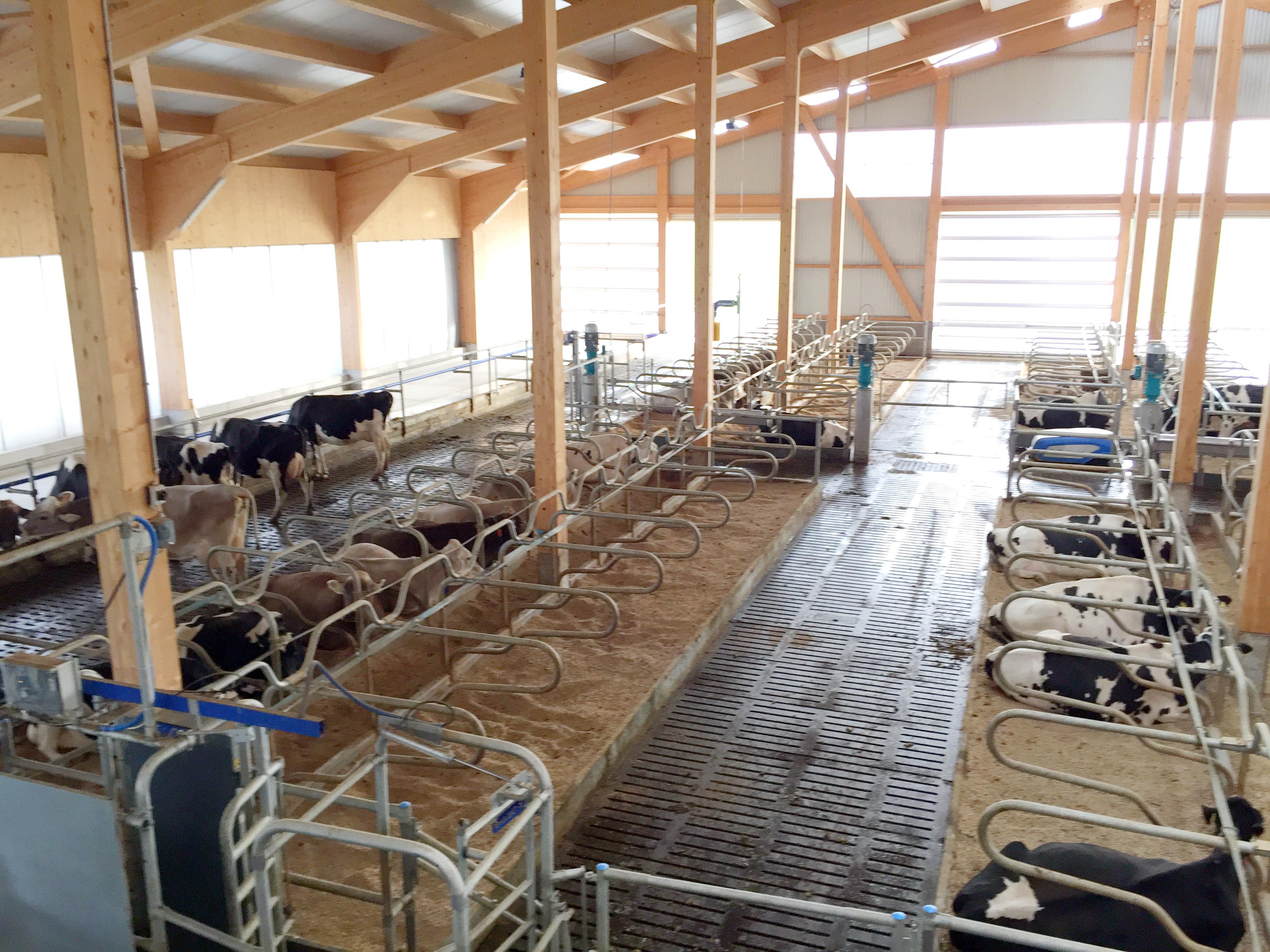 Agrotech Eicher AG