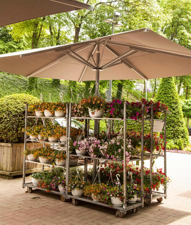 Garten-Center Kremer GmbH