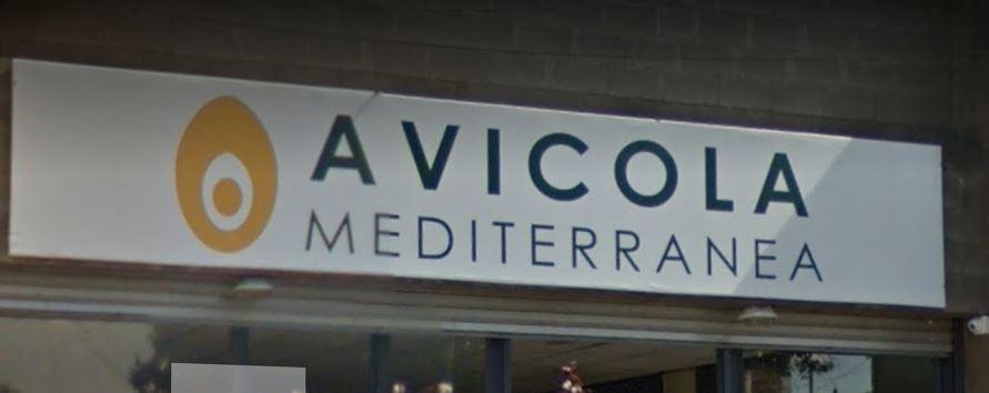 AVICOLA MEDITERRÁNEO SRL