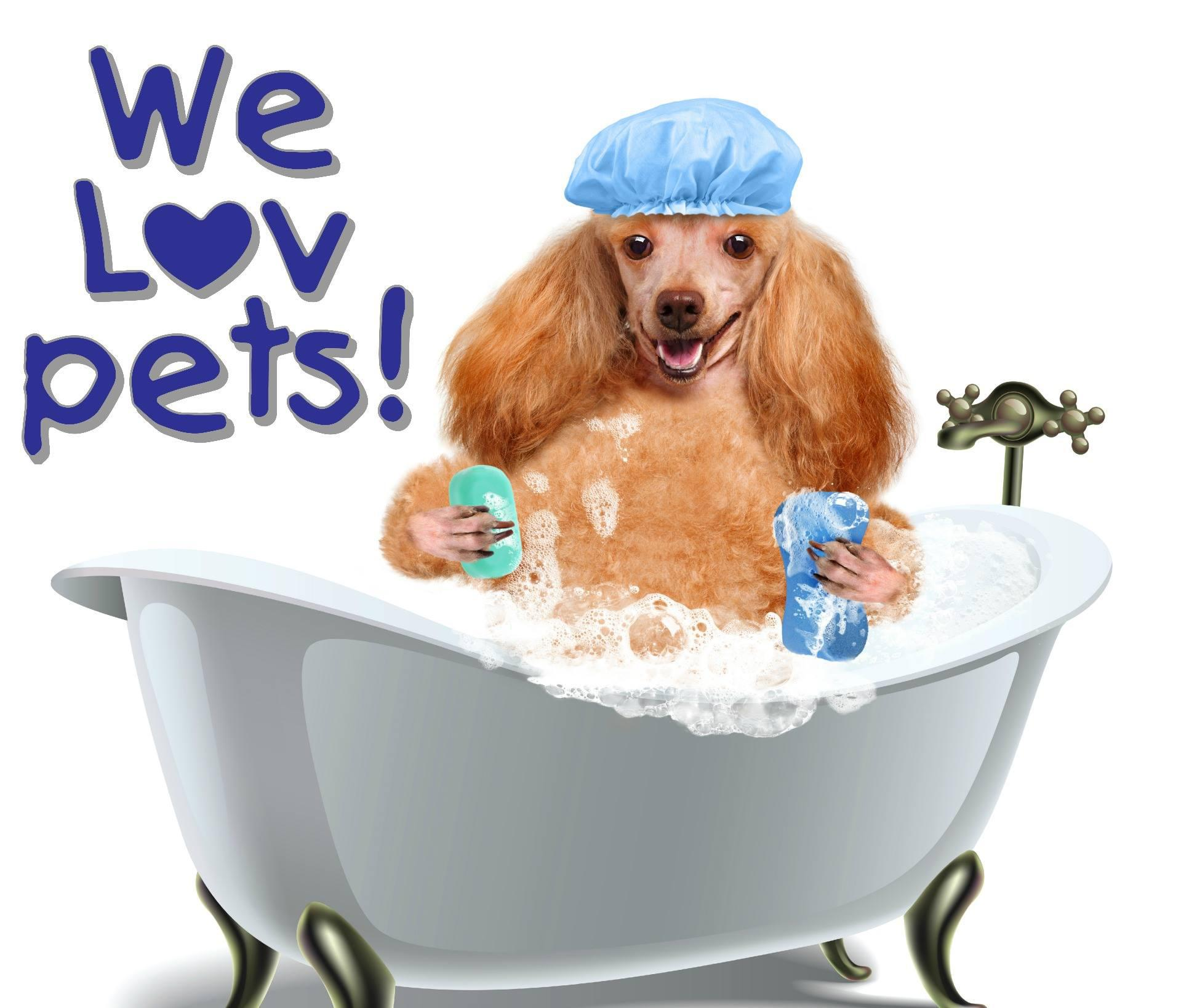 We Lov Pets