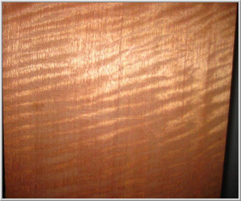 Condon Maurice L Co Inc Lumber image 4