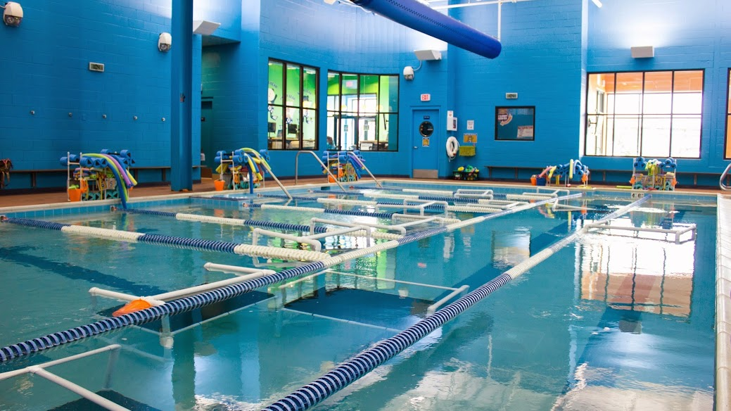 Bear Paddle Swim School In Louisville Ky 40220