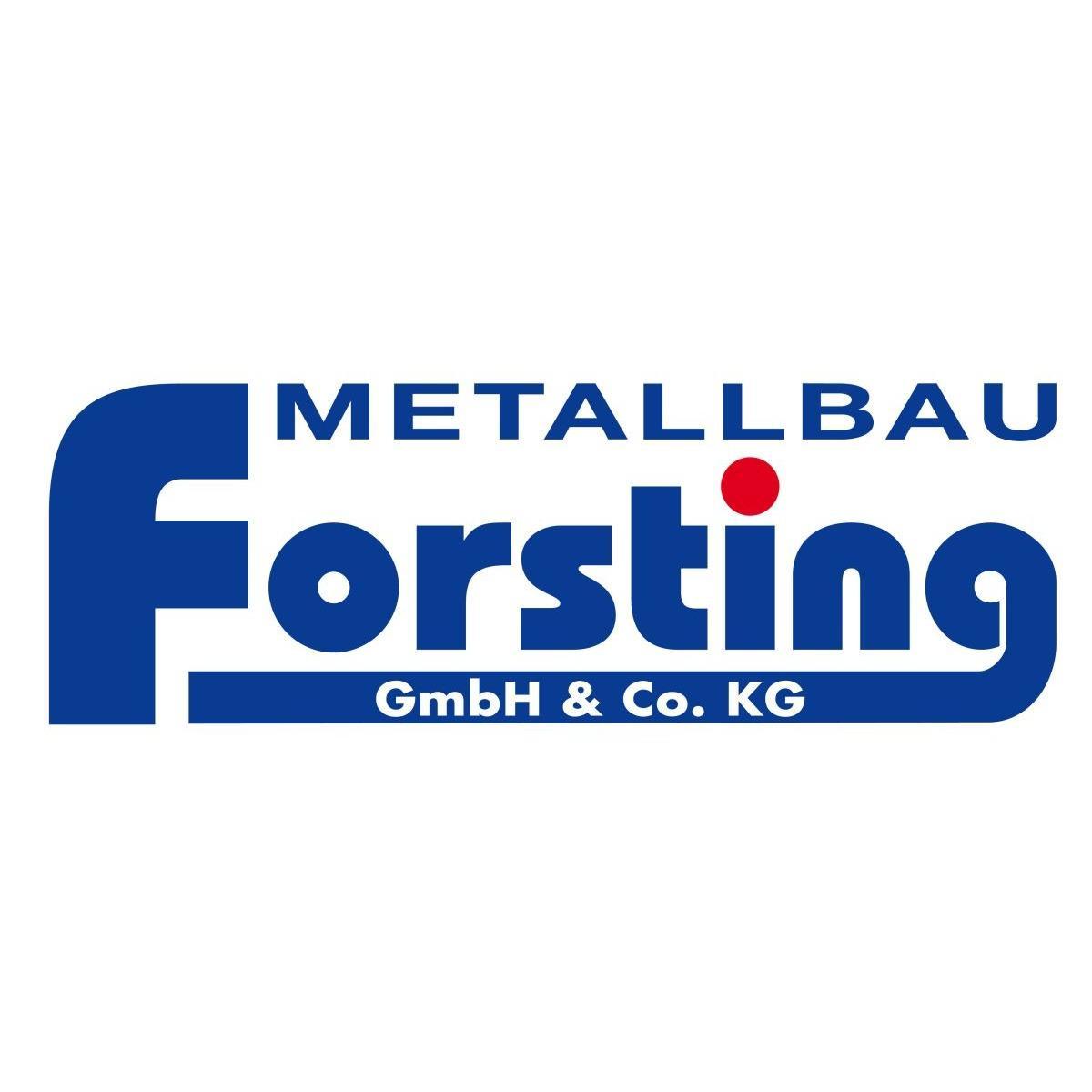 Bild zu Metallbau Forsting GmbH & Co. KG Inh. Guido Forsting in Emsbüren