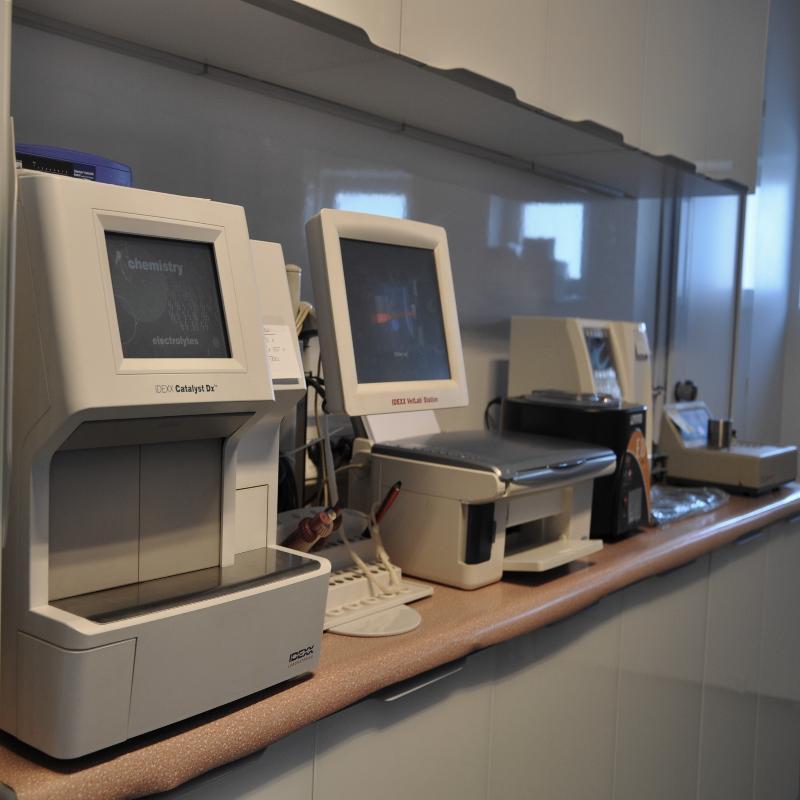 Clinica Veterinaria Il Giglio