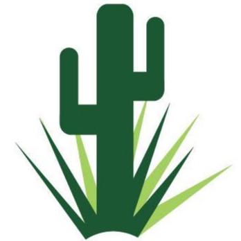 The Yard Stylist - Gilbert, AZ - Landscape Architects & Design