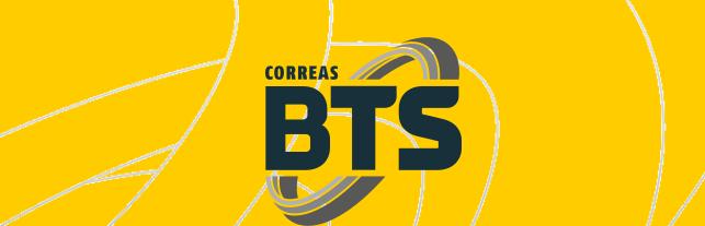 BTS SA - FABRICACION Y DISTRIBUCION DE CORREAS
