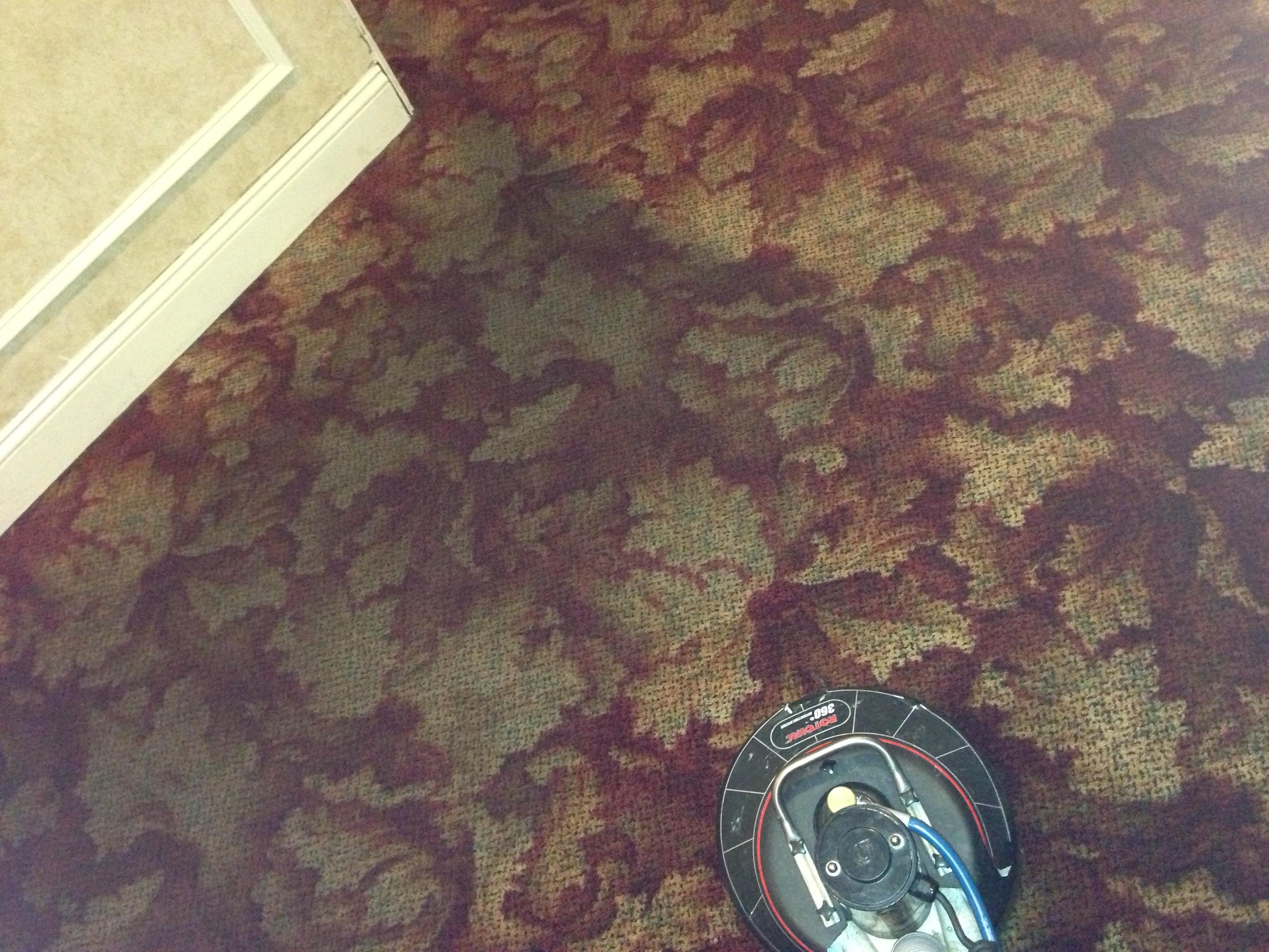 Royal Carpet Cleaners, Bel Air Maryland (MD ...
