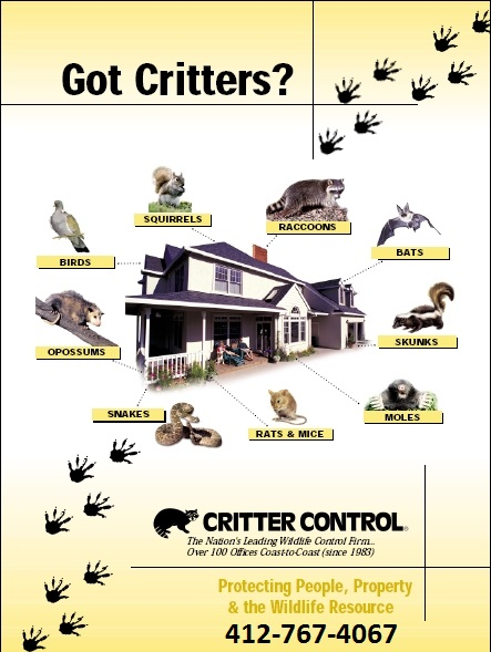Critter Control Of Greater Pittsburgh Coupons Near Me In