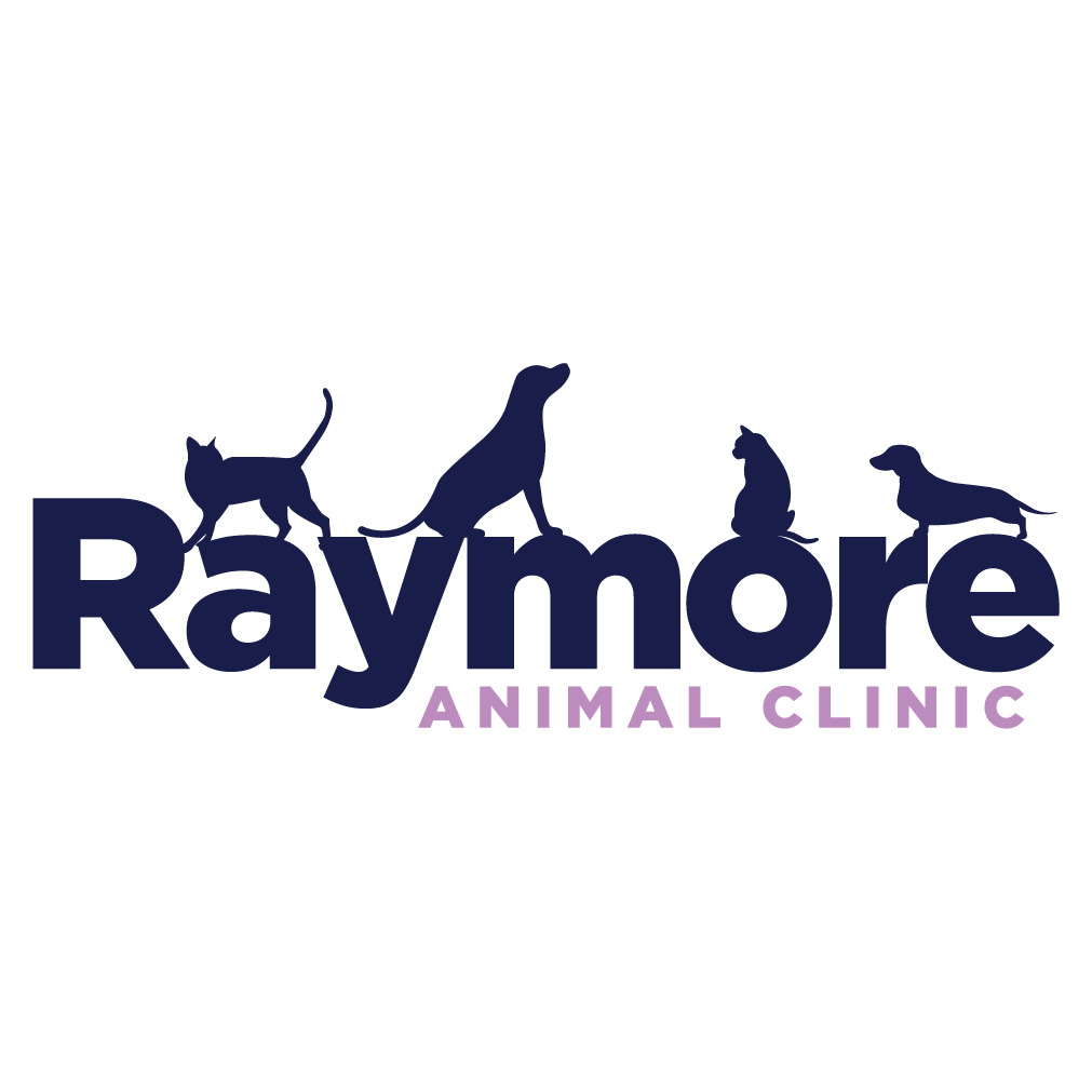 Raymore Animal Clinic - Raymore, MO 64083 - (816)331-4290 | ShowMeLocal.com
