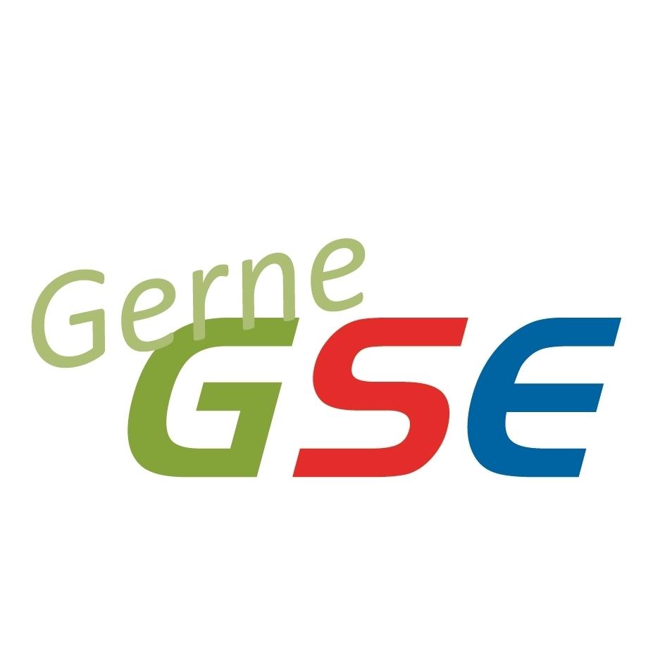 GSE Ges. f. Soziale Dienstleistung Essen mbH