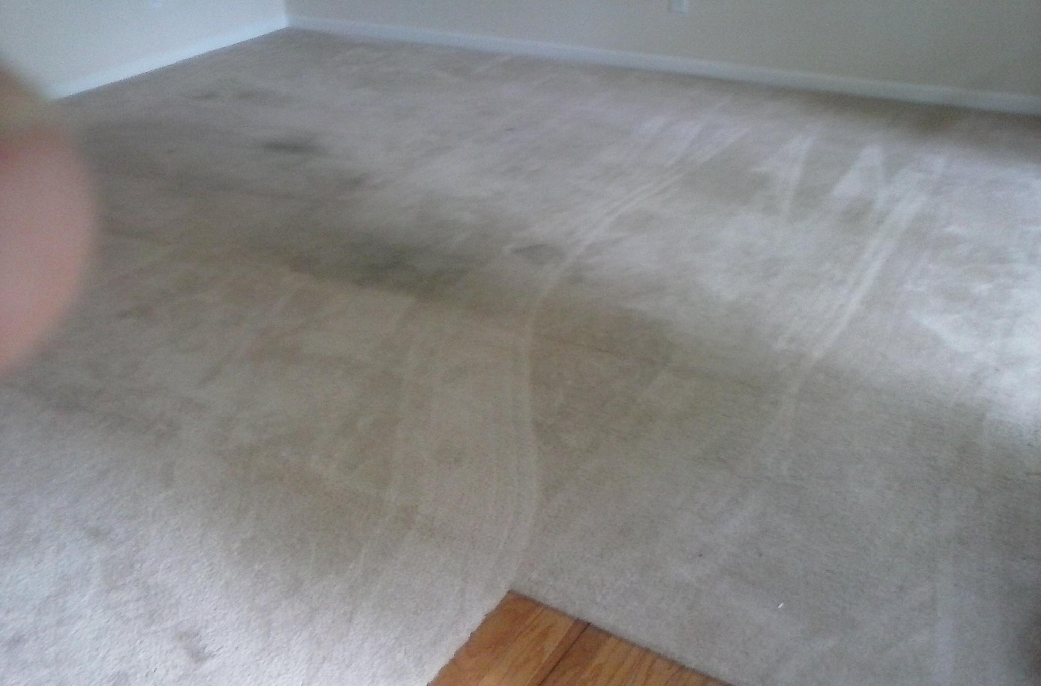 Ja'Von Carpet Care Inc.