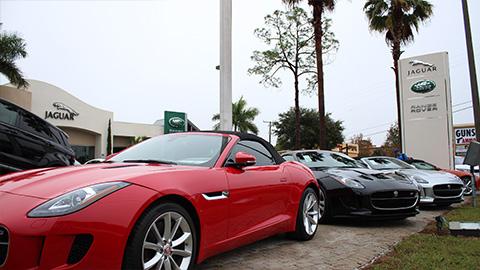 jaguar fort myers fort myers florida fl