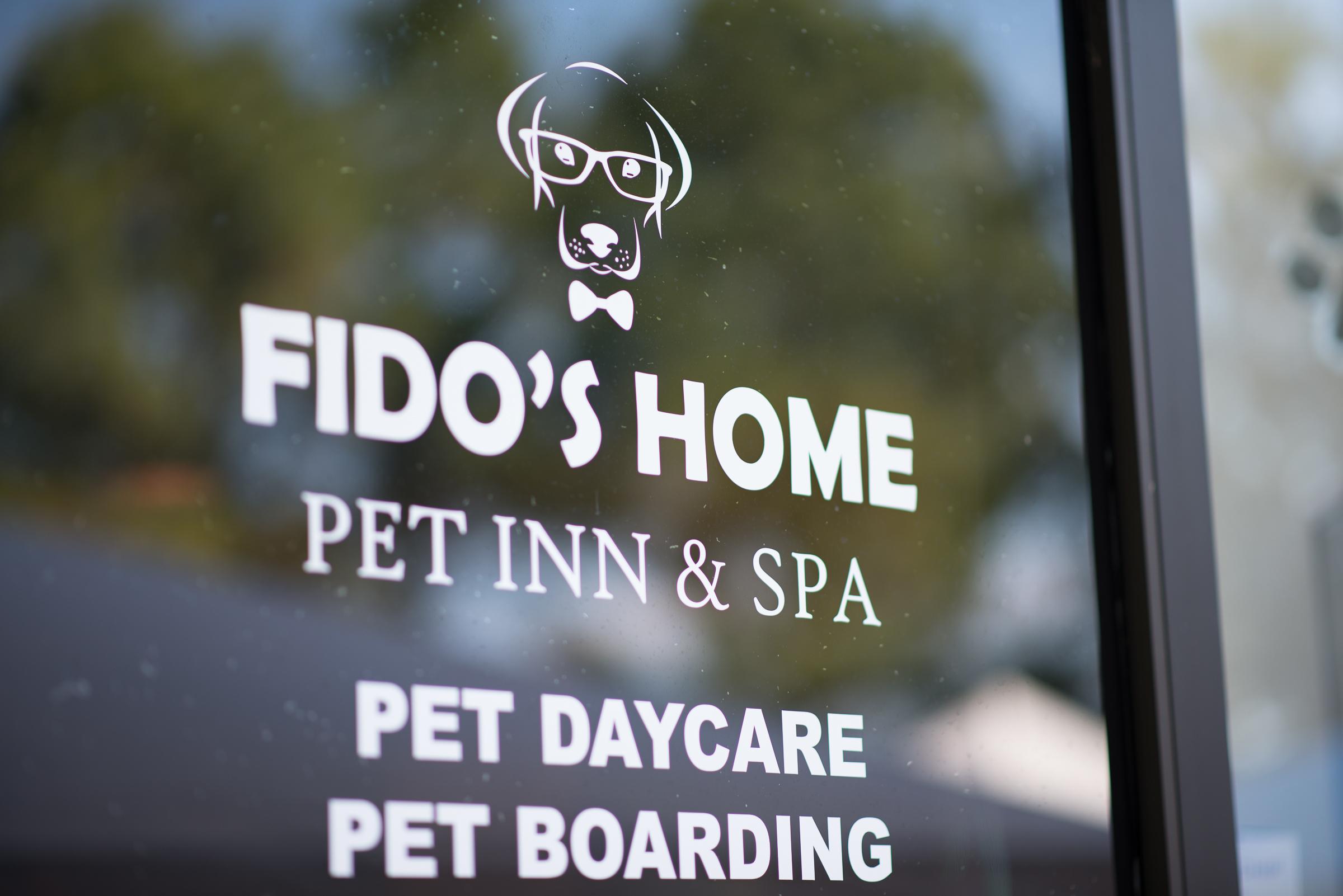 Dog S Day Inn Pet Resort Katy Tx Katy Tx