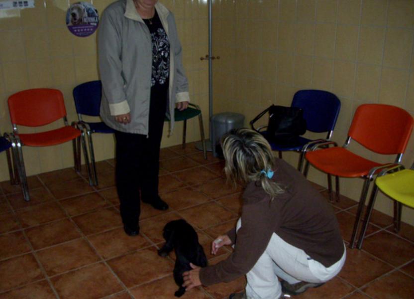 veterina-cl s.r.o.