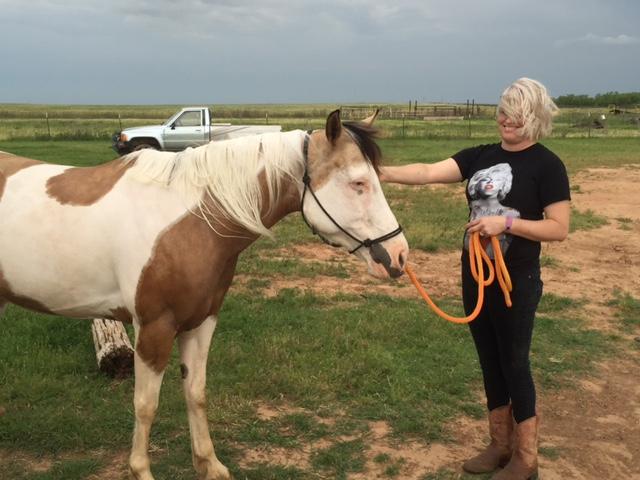 Equine New Life Rehab