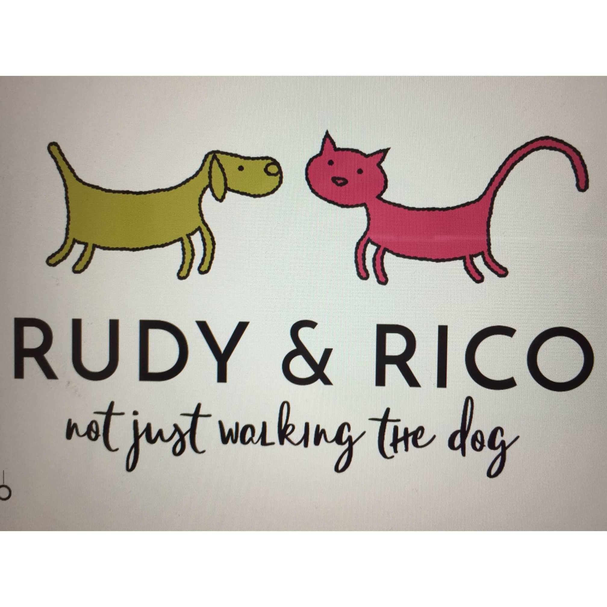 Rudy & Rico - Not Just Walking the Dog - Manchester, Lancashire M21 8BJ - 07976 981601 | ShowMeLocal.com