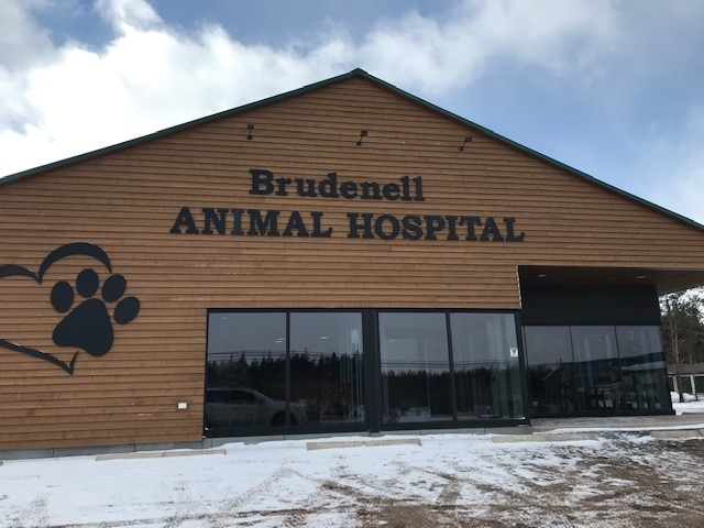 Brudenell Animal Hospital in Montague