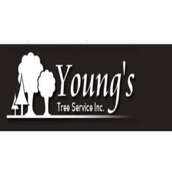 Young's tree Service