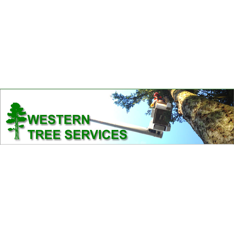 Western Tree Services Corp logo