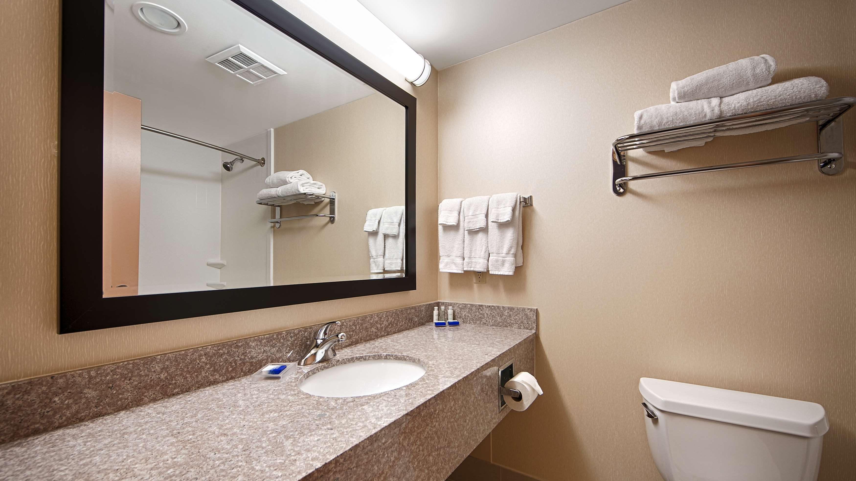 Guest Bathroom Best Western Plus Burlington Inn & Suites Burlington (905)639-2700