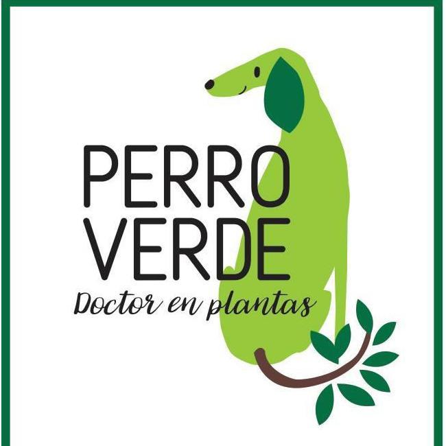 PABLO PERRO VERDE  DAVERDES