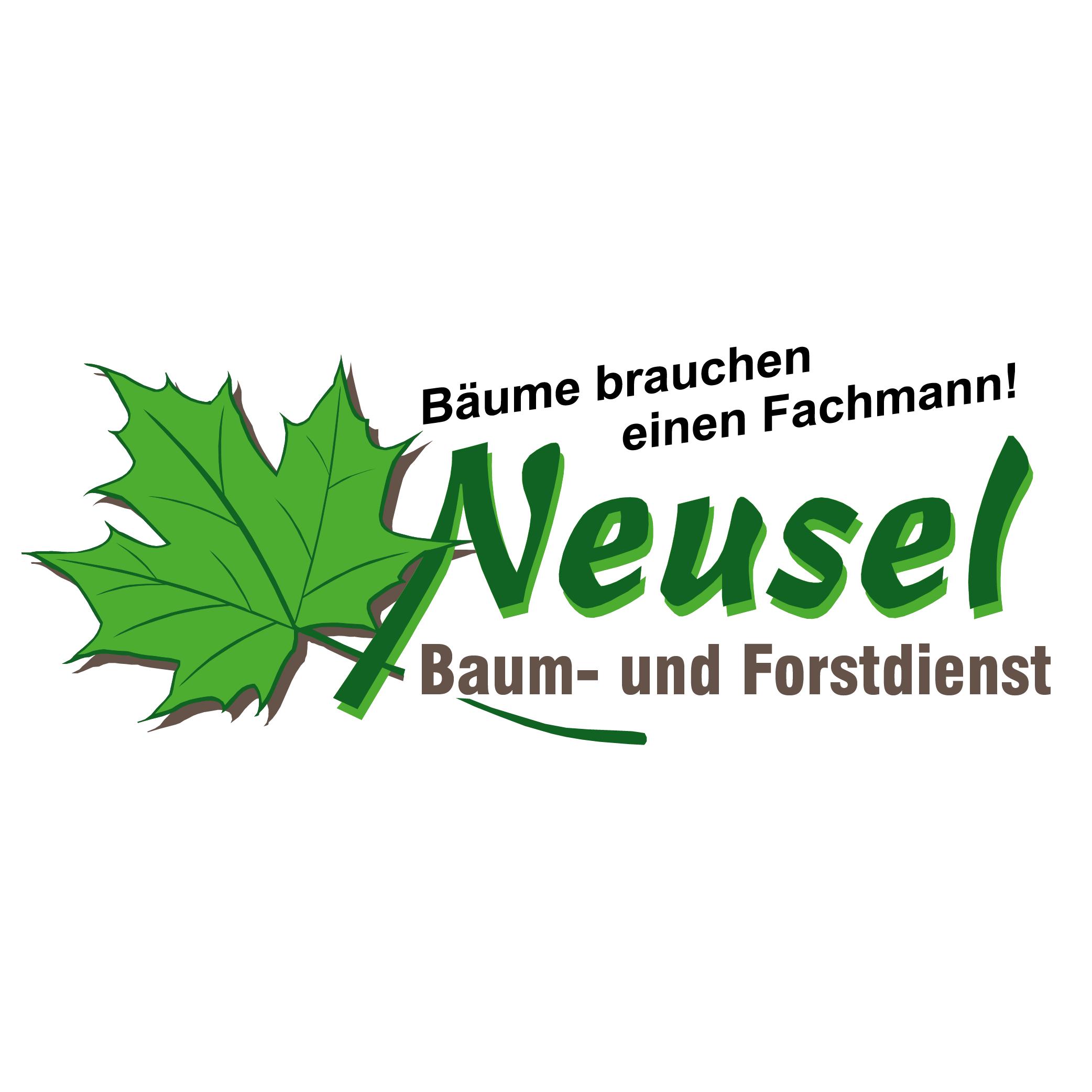 Baumpflege u. -sanierung Frank Neusel