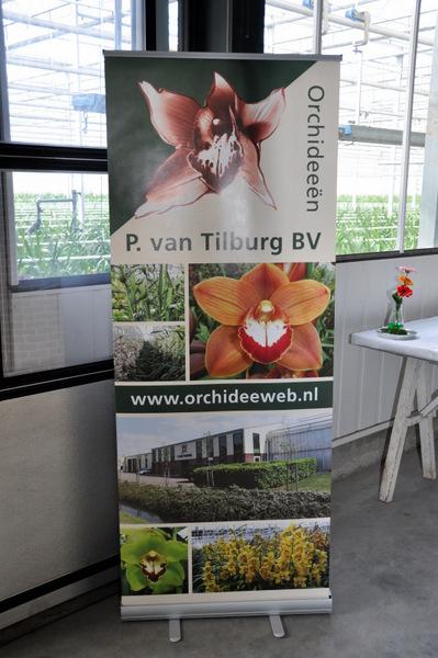 Kwekerij P van Tilburg BV