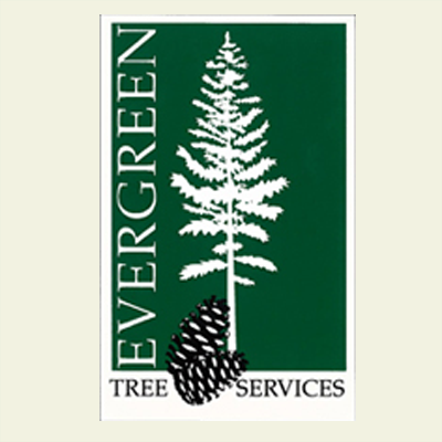 Evergreen Tree Service In Carrollton, Ga 30116. Family Law Attorneys In Michigan. Wisconsin Dpi License Lookup. Commercial Direct Insurance W Family Office. Westwood College Reviews Cloud Access Control. Online Information Technology. Freight Forwarders In Nj Clear Aligner Braces. Interior Design Schools In Maryland. Massage Therapy Information Theory Test App