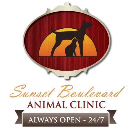 Sunset Boulevard Animal Clinic
