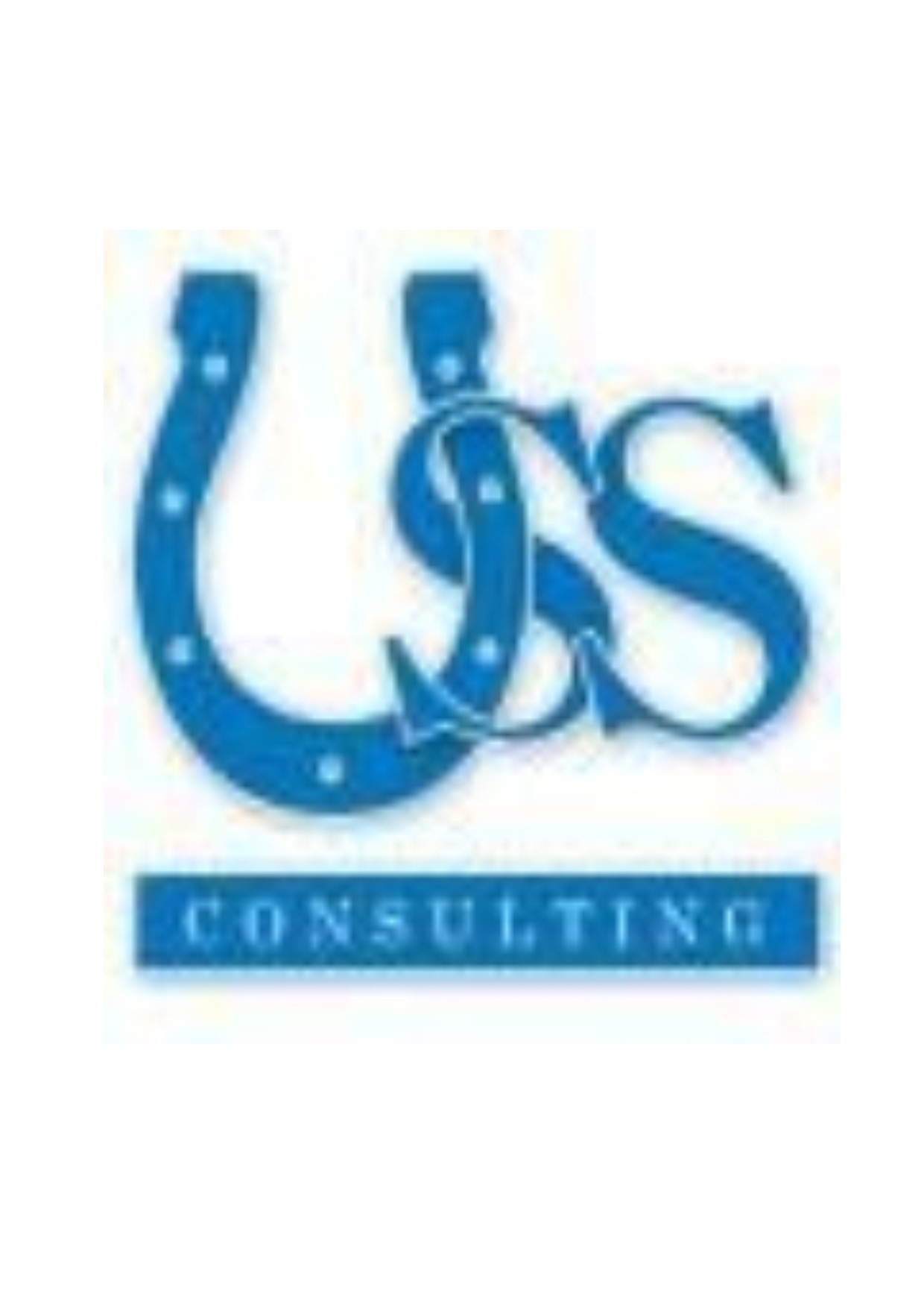 USS Business Consulting