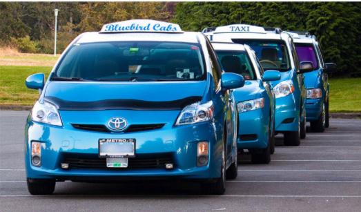 Blue Bird Cabs Ltd