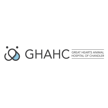 Great Hearts Animal Hospital of Chandler