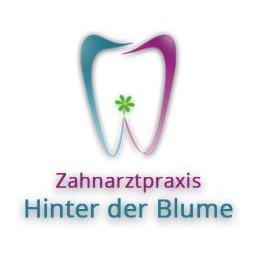 Bild zu Zahnarzt M.Sultan in Hannoversch Münden