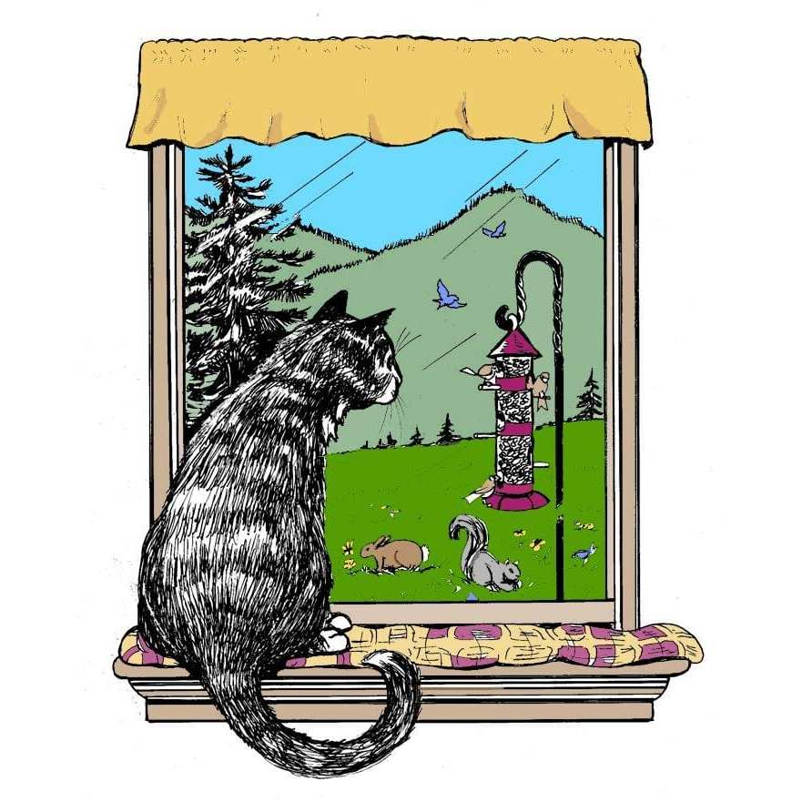 The Country Kitty B & B - Queensbury, NY - Pet Grooming