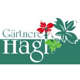 Bild zu Gärtnerei Hagl in Erding