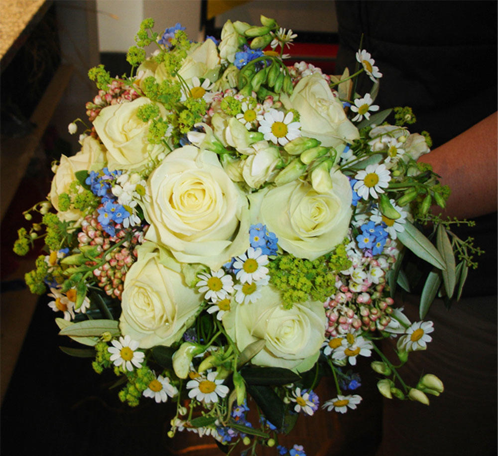 Blumen Schonsky