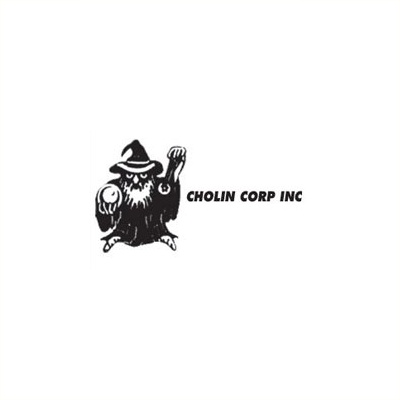Cholin Corp, Inc. - South Williamsport, PA - Home Security Services