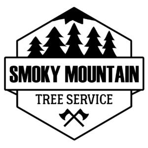 Smoky Mountain Tree Service