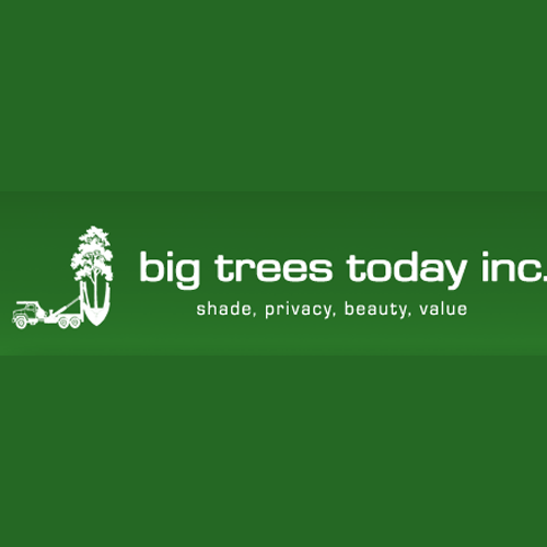 Big Trees Today - Hillsboro, OR - Tree Services