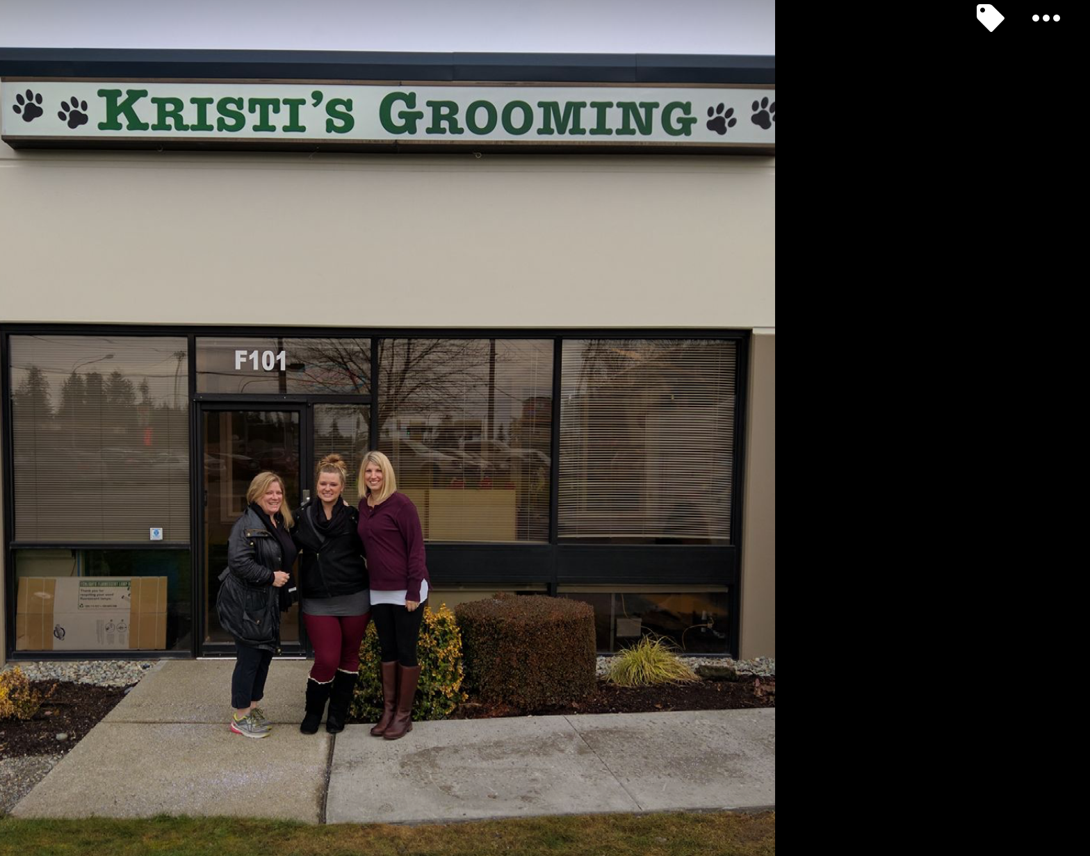 Dog Grooming North End