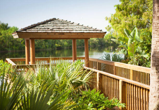 Escape the energy of Orlando and spend a moment on our lake deck.