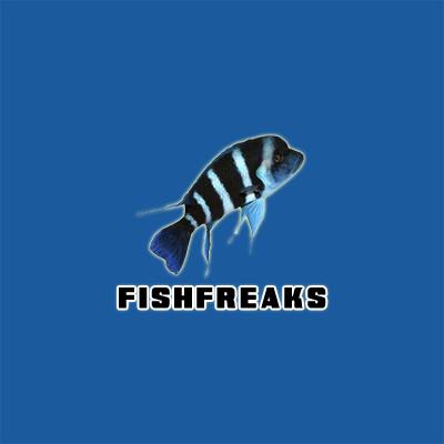 Fish Freaks