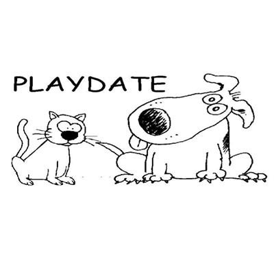 Playdate Naples - Naples, FL - Pet Sitting & Exercising