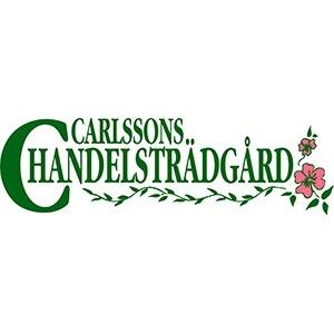 Carlssons Handelsträdgård