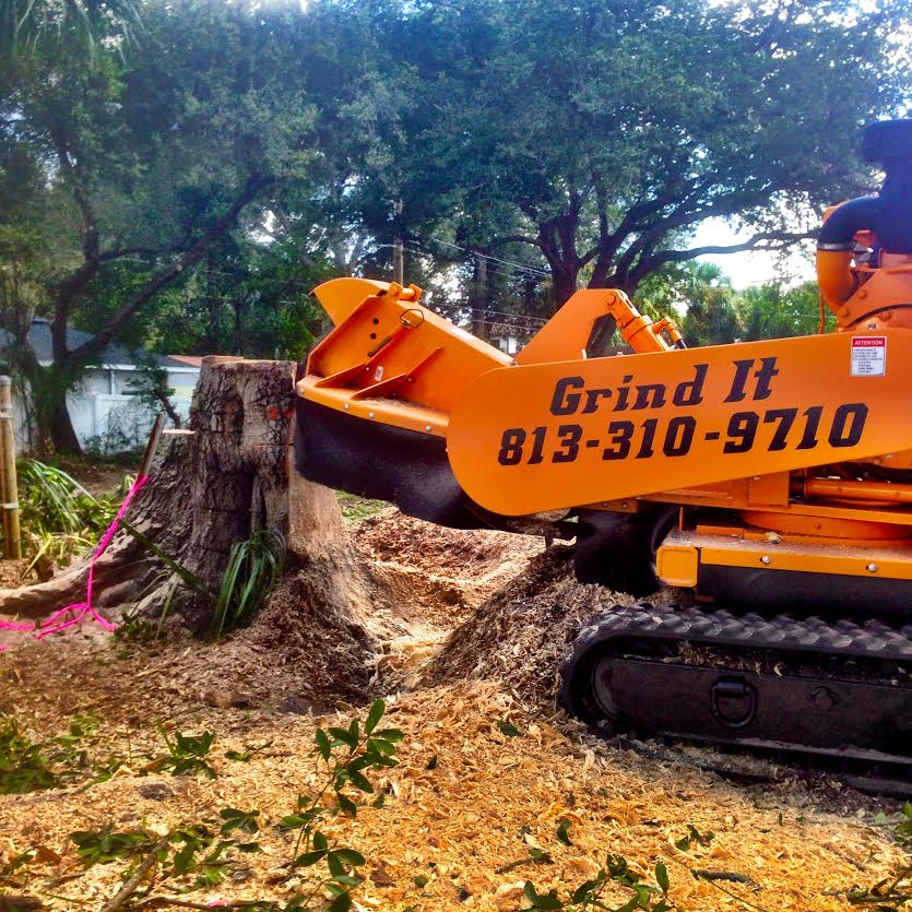 Grind It Stump Removal LLC - Lutz, FL - Tree Services