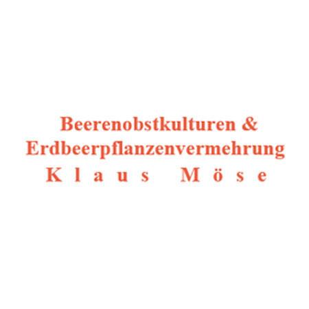 Bild zu Beerenobstkulturen Klaus Möse in Zittau