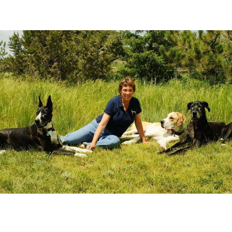 Pawswise Dog Training