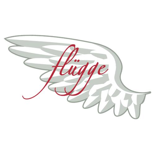 Flügge GmbH & Co. KG